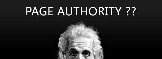 APA ITU PAGE AUTHORITY (OTORITAS HALAMAN) ?