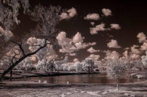 Foto Infrared Yang Menakjubkan 2