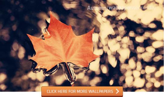 Musim telah berubah 29 Wallpaper musim gugur
