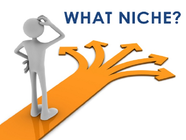 Membangun Blog Niche