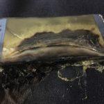 Samsung Akhirnya Memperbaiki Produk Samsung Galaxy Note 7