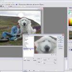 Software Gratis untuk Pengganti Adobe Photoshop