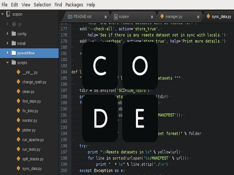 bahasa pemograman terbaru wajib untuk web designer