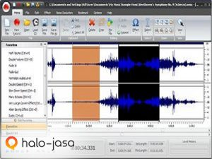 software komputer untuk manipulasi audio digital